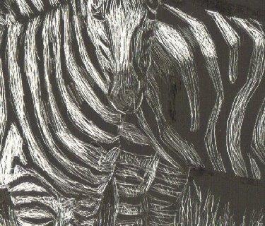 zebras,stripes,camouflage