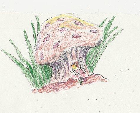 mushroom, fairy, enchanted, asleep