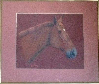 horse, portrait, equine, art