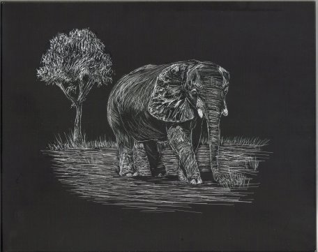 african elephant, nature art