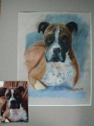 dogportraitMogleyBoxer_thumb