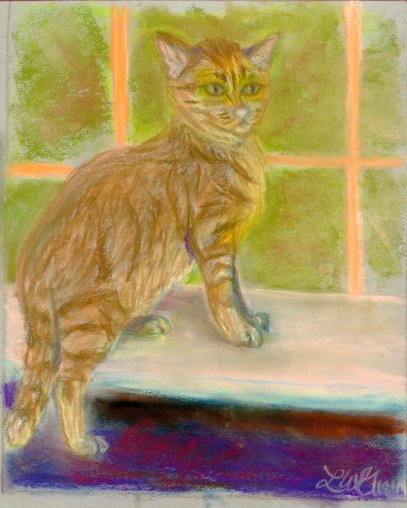 cat, feline,portrait, pet portrait, pastel