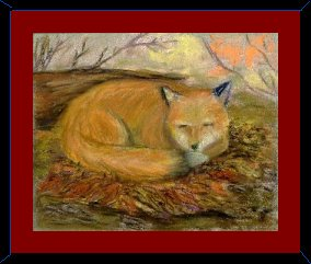 fox, autumn